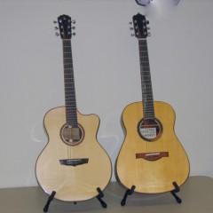 Somogyi and Lichty Guitars