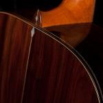 Pau Ferro Guitar, OM Diamond Series