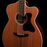 Custom Acoustic Guitar review, cocobolo alchemist