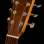 Alchemist Guitar Headstock - Snakewood Headplate