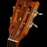 Ukulele Headstock - Snakewood Headplate