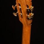 Brazilian Rosewood Tenor Ukulele, Sinker Redwood T47