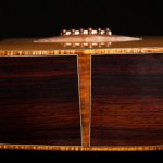 Custom Acoustic Guitar, Cocobolo and Cedar Alchemist