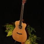 Custom Cocobolo Alchemist Guitar