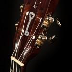 Custom Ukulele, Indian Rosewood High G Tenor