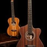 Custom Guitar - Cocobolo ALchemist Lichty Guitar 70