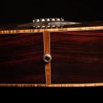 Custom Alchemist Guitar