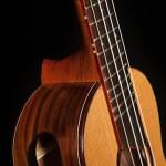 Pau Ferro Concert Ukulele U48