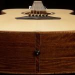 Noah Guthrie's Lichty Guitar