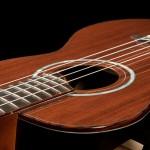 Custom Brazilian Rosewood Long Neck Tenor Ukulele, U65-31