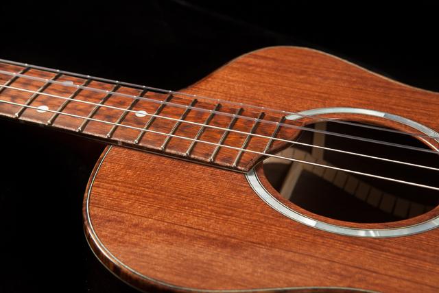 Custom Baritone Ukulele, Brazilian Rosewood U72