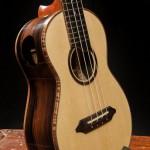 Handcrafted Concert Ukulele - U74, Ziricote