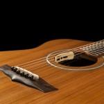 Lichty Custom Acoustic Guitar, Wenge and Sinker Redwood G79