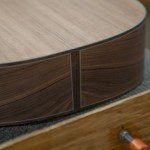 Pau Ferro Acoustic Guitar Construction, Alchemist G80