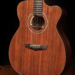 Custom Lichty Guitar, Pau Ferro Alchemist Guitar G80