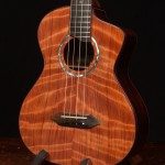 Asian Rosewood Long Neck Tenor Ukulele, U82