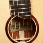 Custom Cocobolo Kiku, u87