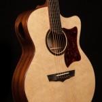 Lichty Madagascar Small Jumbo Guitar G87