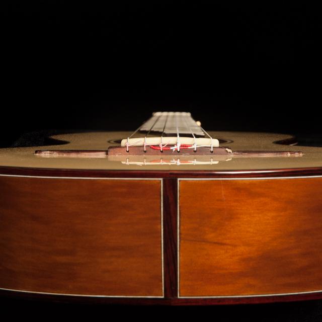 Ancient Kauri Guitar