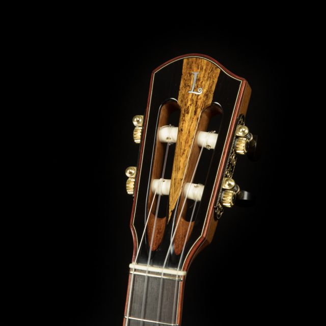 African Blackwood headstock with Bloodwood binding