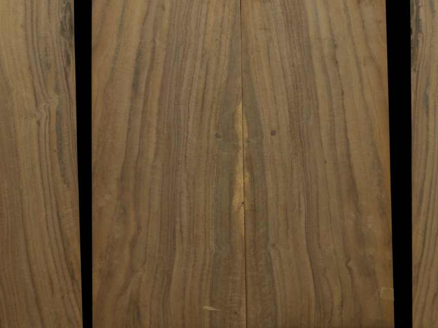 Walnut Guitar Tonewood