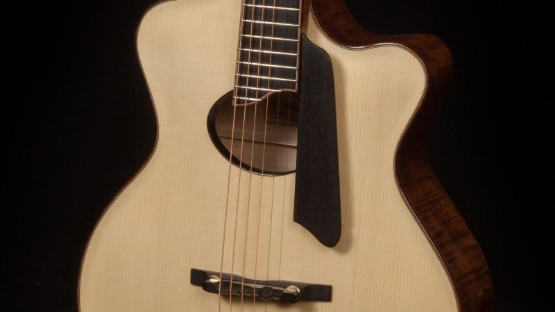 Lichty Archtop Guitar