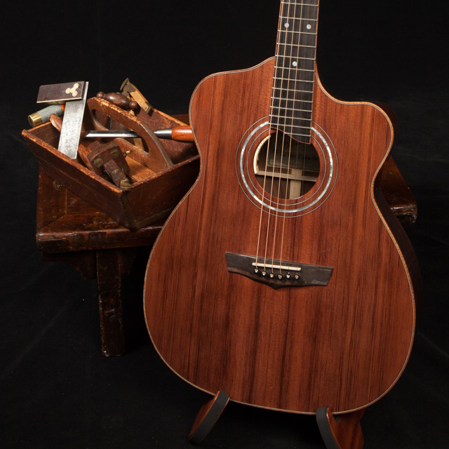 Lichty Custom Alchemist Guitar