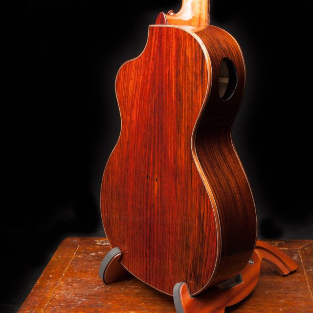 lichty-cocobolo-parlor-guitar-g101