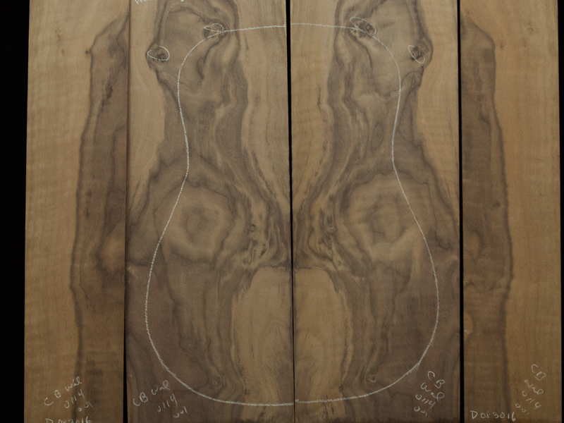 Walnut-Guitar-Tonewood-D083016