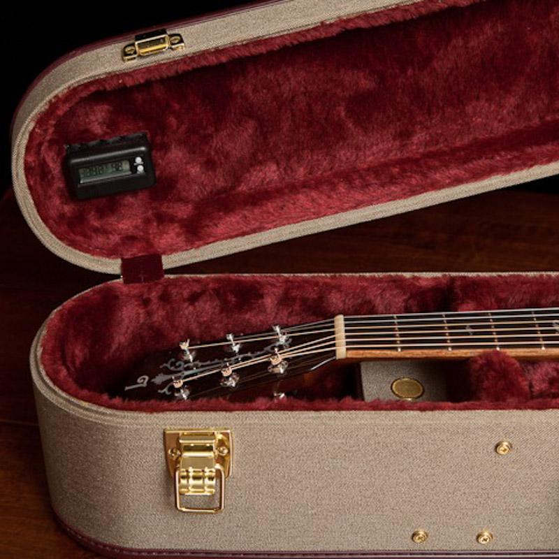 Ameritage Gold Custom Guitar Cases