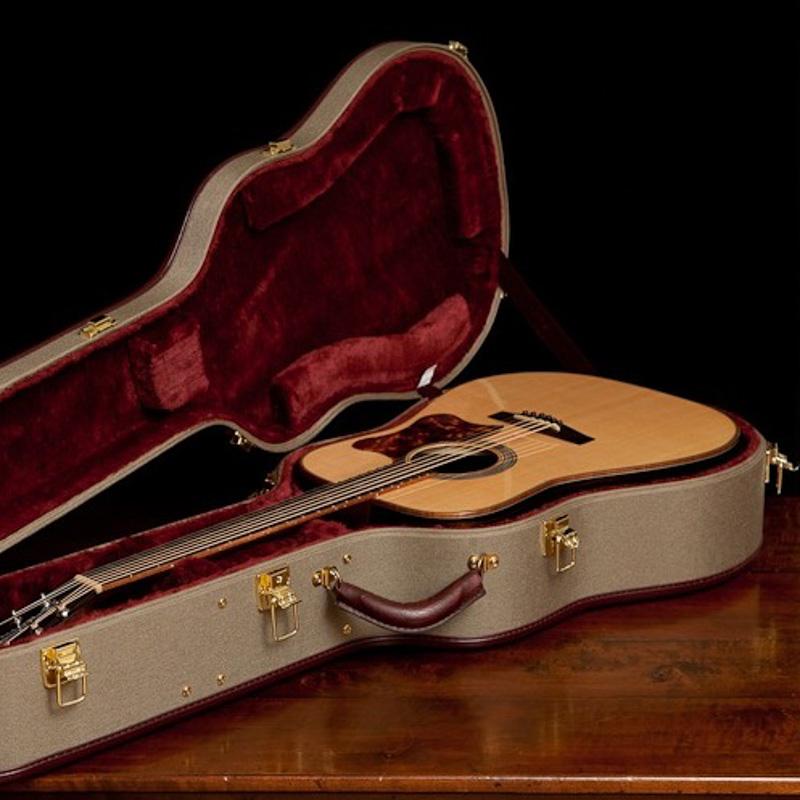 Ameritage Gold Guitar Case
