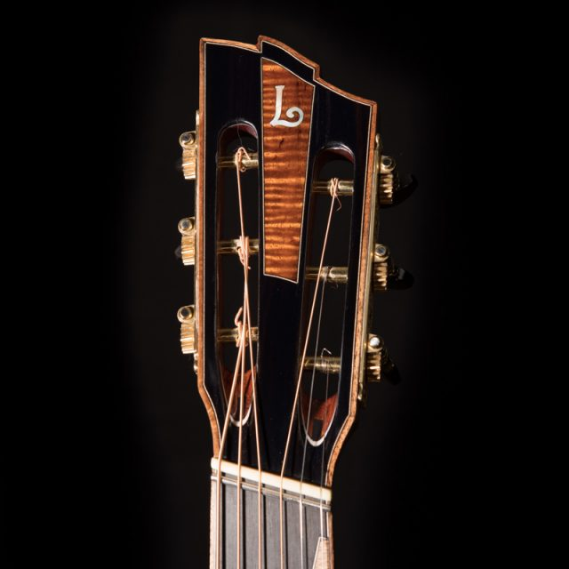 Lichty-Custom-Multiscale-Neck-Guitar