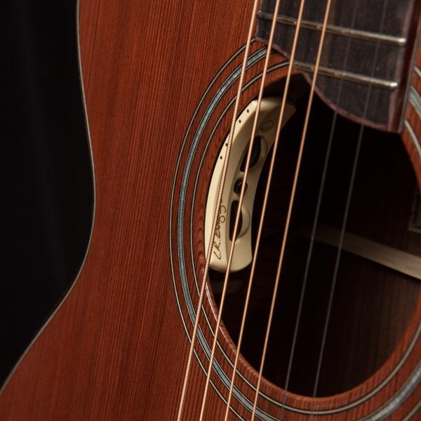 LR Baggs Pickup, Custom Lichty Guitar