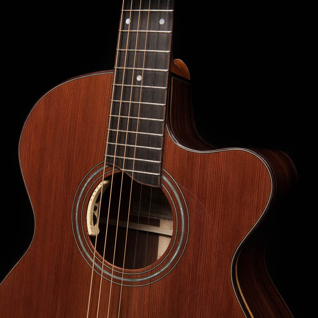 Custom Guitar Cutaway