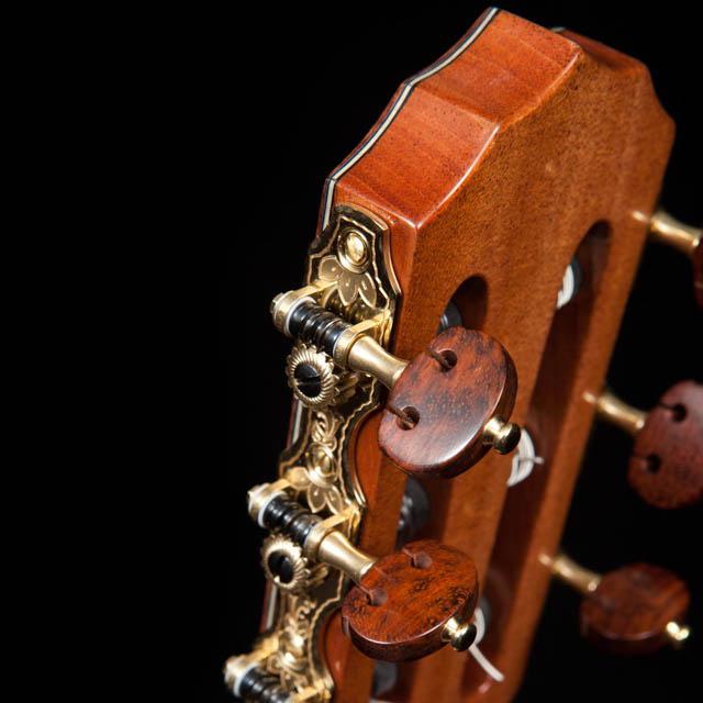 Custom Guitar Tuners