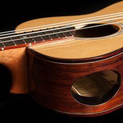 Custom Guitar Ukulele Soundport