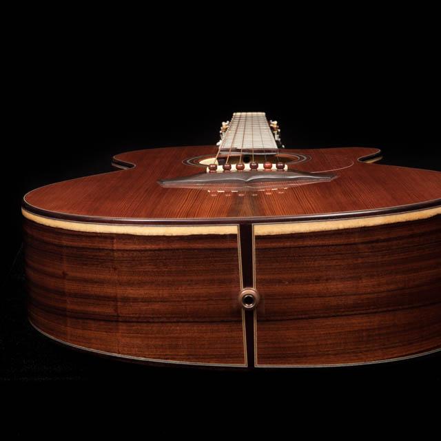 Custom Guitar Wedge Shaped-Body
