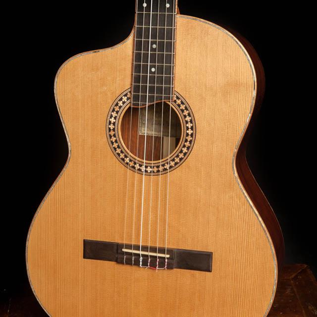 Custom Left Handed Guitars