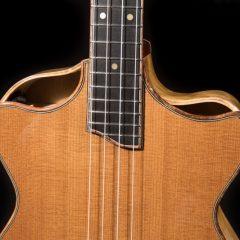 Lichty-Ziggy-Modified-Baritone-Ukulele-2