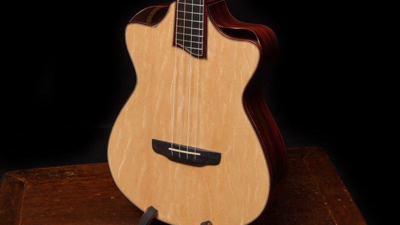 Modified-Baritone-Ukulele-Lichty