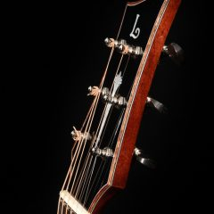 parlor-guitar-lichty-g100