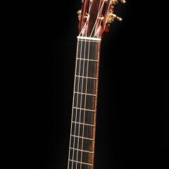 Lichty Dream Guitar G77