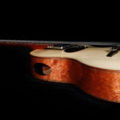Lichty-Custom-Artchtop-Parlor-Guitar-G103