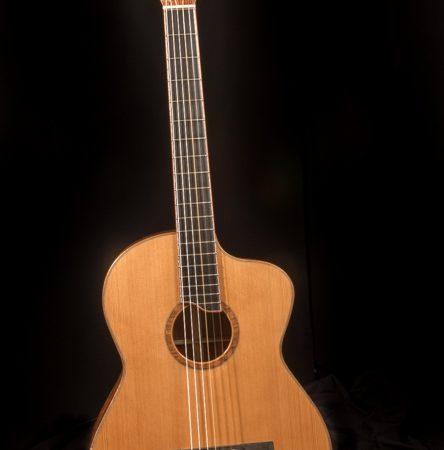 Joe-Zenas-Guitar-Lichty-Guitars-Workshop
