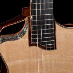 Custom Cocobolo Six String Baby Bard
