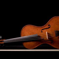 Lichty Viola V1