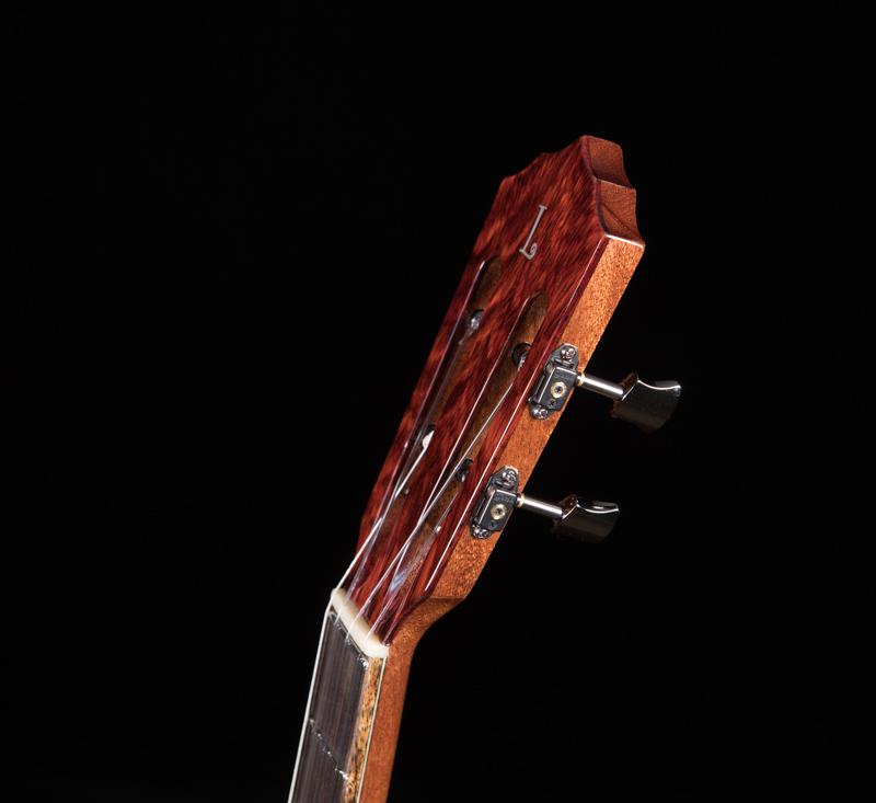 Lichty-Tenor-Guitar-G120
