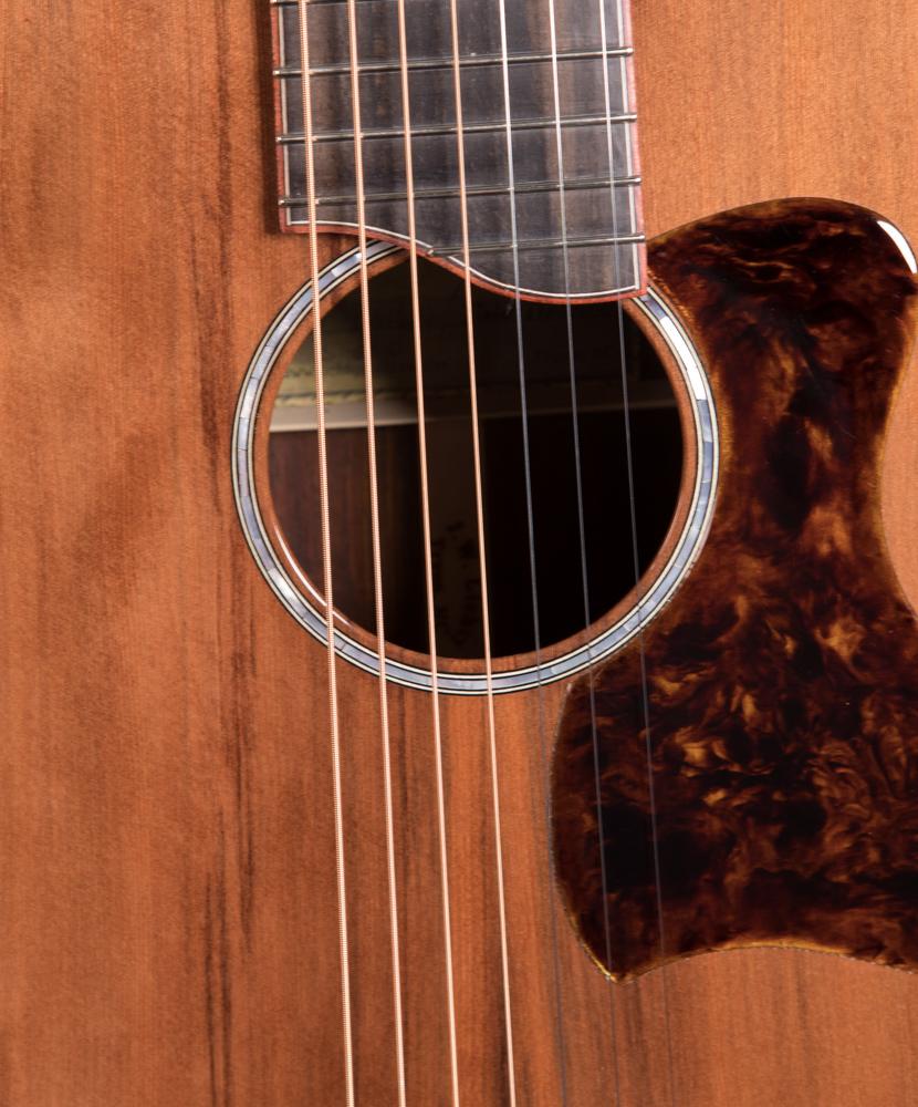 Custom-Guitar-G124