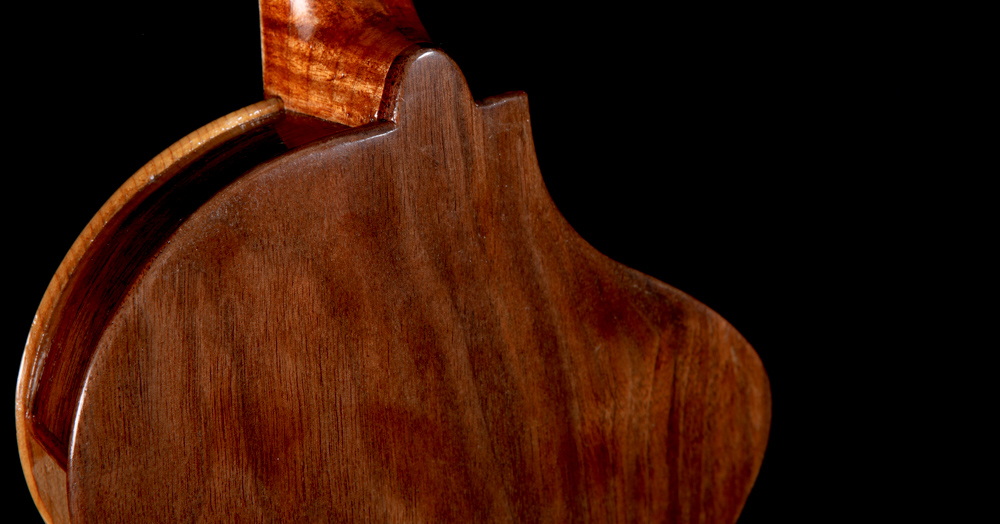 Lichty-Electric-Fiddle-handcrafted