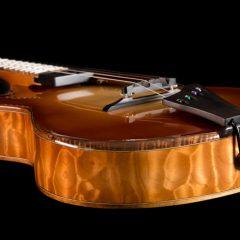 Lichty-Custom-Archtop-Ukulele-U143